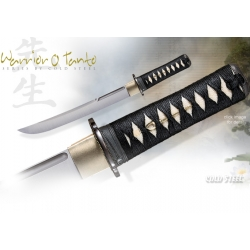 Cold Steel Warrior Series Tanto 88BT