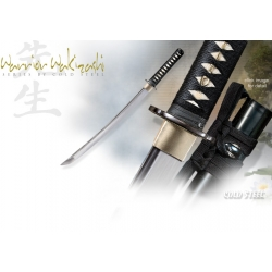 Cold Steel Warrior Series Wakazashi 88BWW