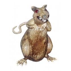 Shnilá krysa