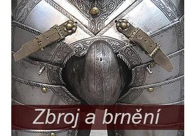 Zbroj a brnění, helmy, štíty
