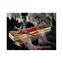 Harry Potter Kouzelnická Hůlka