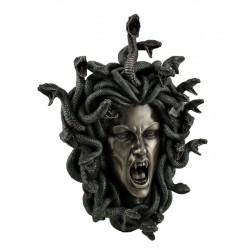 Medusa hlava